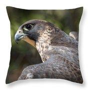 Fierce Predator Throw Pillow