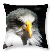 Fierce Pride Throw Pillow