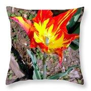 Fiery Beauty Throw Pillow