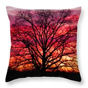 Fiery Oak Throw Pillow