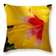 'fifth Dimension' Hibiscus Throw Pillow