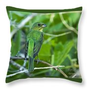 Fifty Shades Of Green Throw Pillow