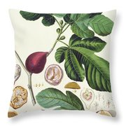 Fig Engraved By Johann Jakob Haid  Throw Pillow