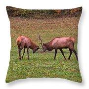 Fighting Bull Elks Throw Pillow