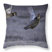 Fighting Prairie Chickens Throw Pillow by Thomas Young