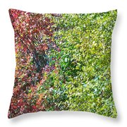 Fighting The Change Throw Pillow