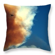 Fighting The Clover Fire Throw Pillow