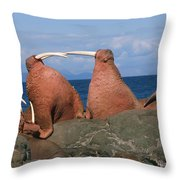 Fighting Walrus Throw Pillow