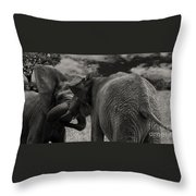 Fiighting Elephants Throw Pillow