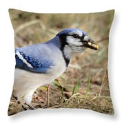 Filling The Cache Throw Pillow