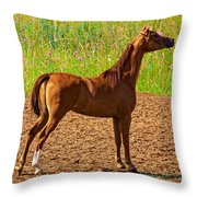 Filly Throw Pillow