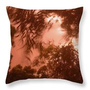 Film Homage Joseph Cornell Rose Hobart 1936 Summer Monsoon Storm In My Front Yard Casa Grande Az '05 Throw Pillow