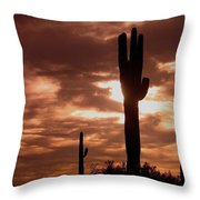 Film Homage Orson Welles Saguaro Cacti The Other Side Of The Wind Carefree Arizona 2004 Throw Pillow