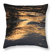 Film Noir Cinematographer John F. Seitz Gloria Swanson Sunset Blvd 1950 Casa Grande Arizona 2004 Throw Pillow