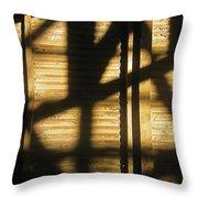Film Noir Dick Powell Edward Dmytryk Cornered 1945 Building Interior Shadows Coolidge Arizona  2004 Throw Pillow