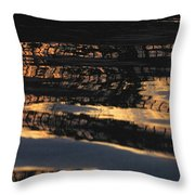 Film Noir Kevin Spacey The Usual Suspects 1995 Dark Pool Water Casa Grande Arizona 2004 Throw Pillow