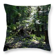 Filtered Sunlight Peace Throw Pillow