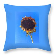 Final Breath Throw Pillow
