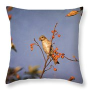 Finch In A Cherry Tree Throw Pillow
