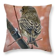 Finch On A Snowy Day Throw Pillow
