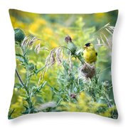 Find The Finch Throw Pillow