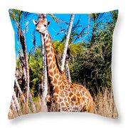 Find The Giraffe Throw Pillow