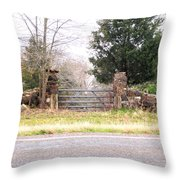 Find The Mailbox Throw Pillow
