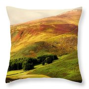 Find The Soul. Golden Hills Of Wicklow. Ireland Throw Pillow by Jenny Rainbow