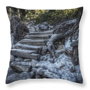 Find Your Own Way Throw Pillow