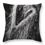 Finding Love Throw Pillow by Joan Carroll