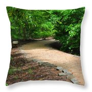 Finding The Way - Yates Mill Throw Pillow