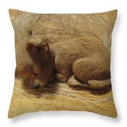 Finding Your Forever Home Throw Pillow