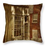 Fine Repairs Throw Pillow by Lois Bryan