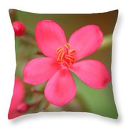 Fine Tune Throw Pillow