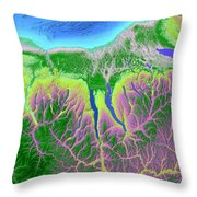 Finger Lakes Map Art Throw Pillow by Paul Hein