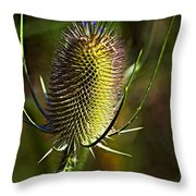 Finis Throw Pillow