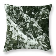 Fir Tree Branch Covered With Snow  Throw Pillow
