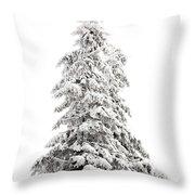 Fir Tree In Winter Throw Pillow