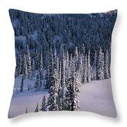 Fir Trees, Mount Rainier National Park Throw Pillow