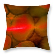 Fire And Earth Throw Pillow