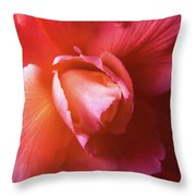 Fire And Ice Floral Begonia Throw Pillow