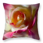Fire And Ice Rose In Square Format Throw Pillow