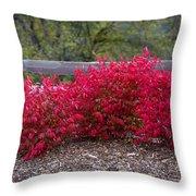Fire Bush Split Rail Throw Pillow