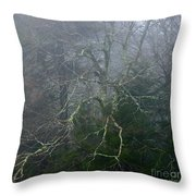 Fire Cherry In Mist Throw Pillow