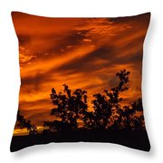 Fire In The Skies Throw Pillow by Rebecca Cearley