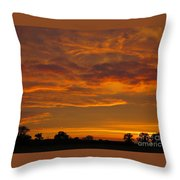 Fire In The Sky Throw Pillow by Ann Horn