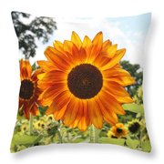 Fire Petals Throw Pillow