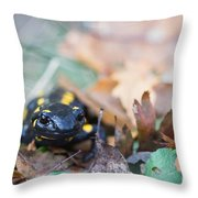 Fire Salamander Dry Leaves Throw Pillow