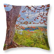 Fire Tree Throw Pillow by George Paris