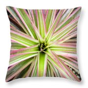 Firecracker Bromiliad Throw Pillow